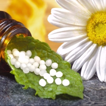 Homeopathie en Mesologie of Mesoloog